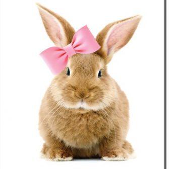 Plakar do pokoju dziecka z króliczkiem