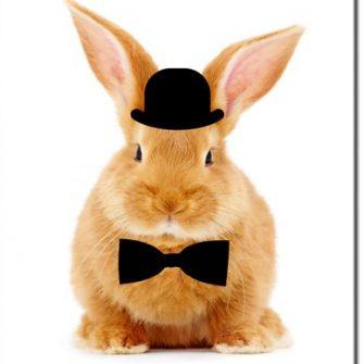 Plakat z królikiem w cylindrze
