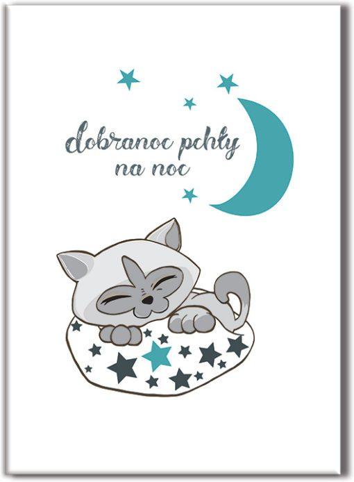 Plakat śpiący kotek