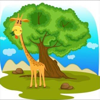 Fototapeta z wesołą żyrafą