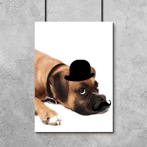 plakat do pokoju dziecka z psem w meloniku