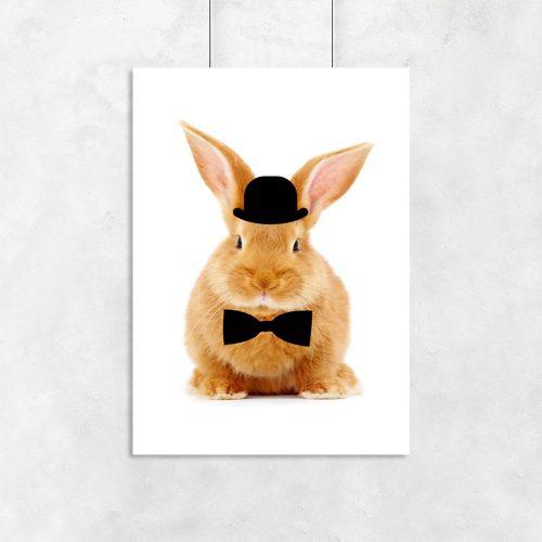 plakat z króliczkiem w muszce i meloniku