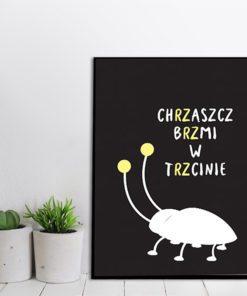 Plakat w ramie z chrząszczem
