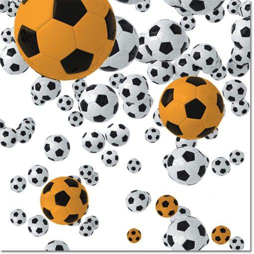 Obraz piłka