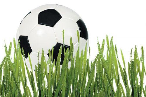 Fototapeta z piłką w trawie