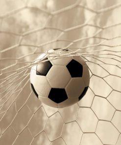 Tapeta piłka w grze