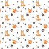 liski pomarańczowe i brązowe łapki