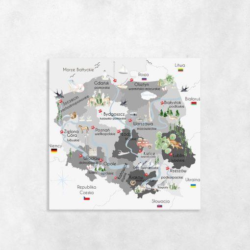 Obraz mapa Polski i województw