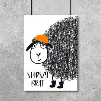 plakat z motywem owcy i napisu