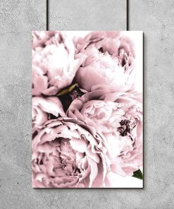 plakat z różową peonią