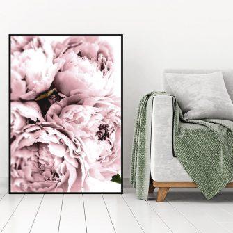 plakat z różową piwonią