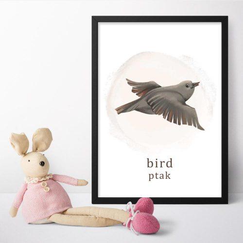 Plakat do przedszkola z ptakiem