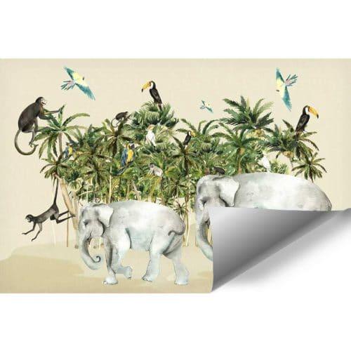 kolorowa dżungla na fototapecie dla dzieci