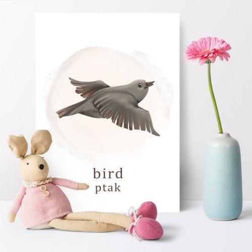 Plakat do szkoły z ptakiem
