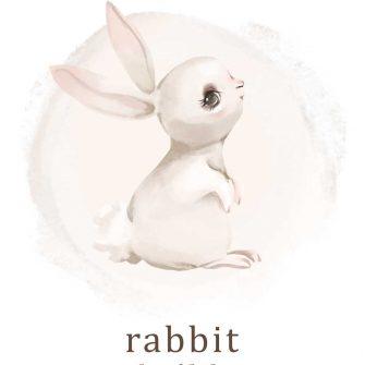 Plakat typograficzny - Rabbit