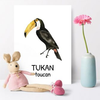 Plakat edukacyjny - Tukan dla dziewczynki